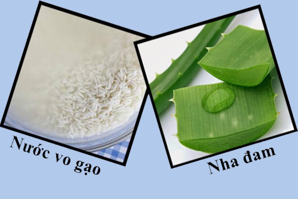 Trị mụn bằng nước vo gạo và nha đam